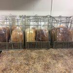 QL - Bread